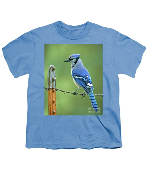 Blue Jay On The Fence Youth T-Shirt