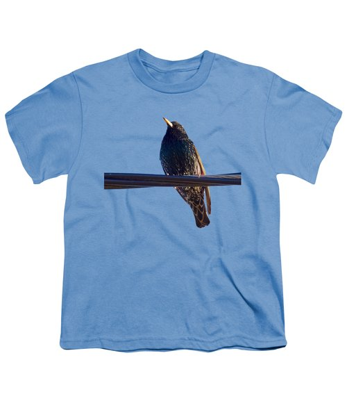 European Starling Trasparent Background Youth T-Shirt