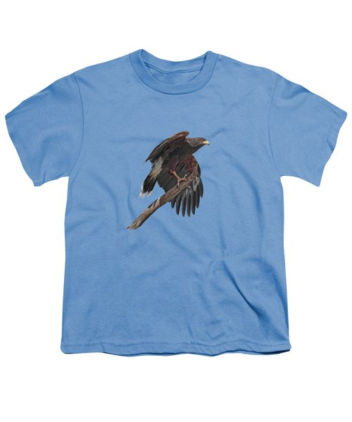 Harris Hawk - Transparent Youth T-Shirt by Nikolyn McDonald