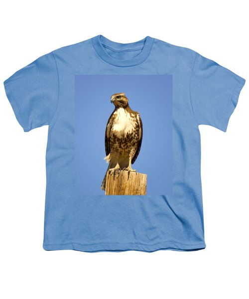 Red-tailed Hawk On Post Youth T-Shirt