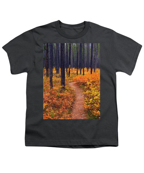 Autumn In Yellowstone Youth T-Shirt