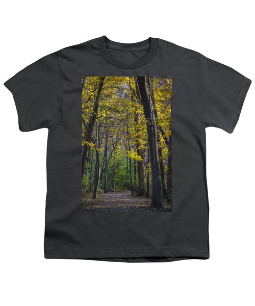 Youth T-Shirt featuring the photograph Autumn Trees Alley by Sebastian Musial