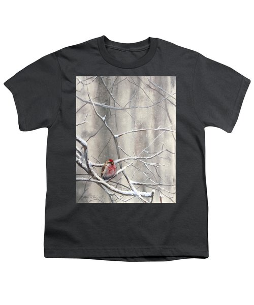 Eyeing The Feeder Alaskan Redpoll In Winter Youth T-Shirt by Karen Whitworth