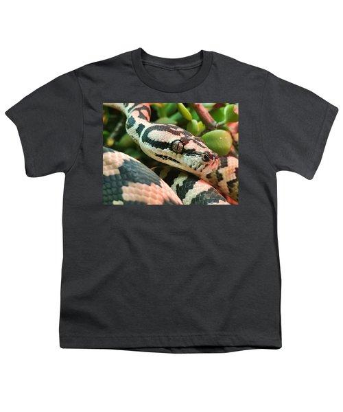 Jungle Python Youth T-Shirt