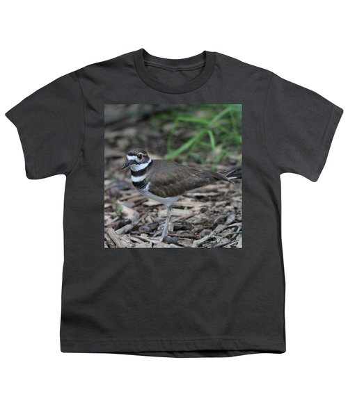 Killdeer Youth T-Shirt by Dan Sproul