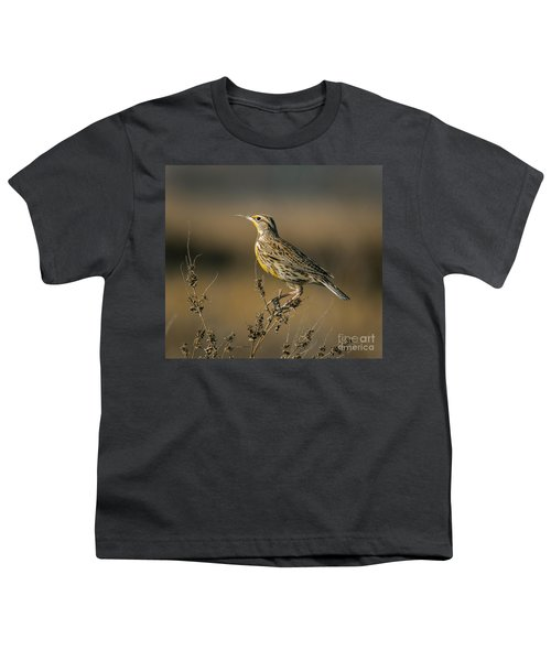 Meadowlark On Weed Youth T-Shirt by Robert Frederick