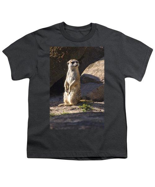 Meerkat Looking Left Youth T-Shirt by Chris Flees