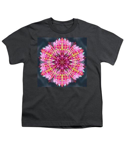 Pink Lightning Youth T-Shirt by Derek Gedney