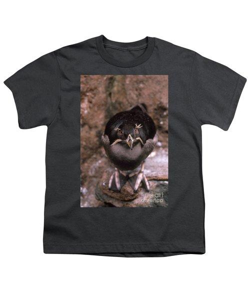 Rhinoceros Auklet Youth T-Shirt