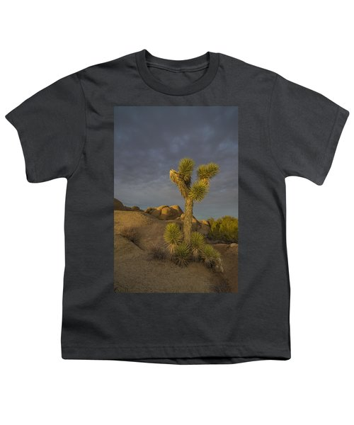 Reaching For The Sky Youth T-Shirt