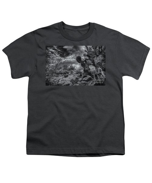 Youth T-Shirt featuring the photograph Sonoran Desert 15 by Mark Myhaver
