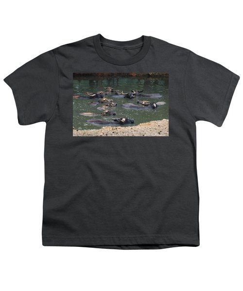 Water Buffalo Youth T-Shirt