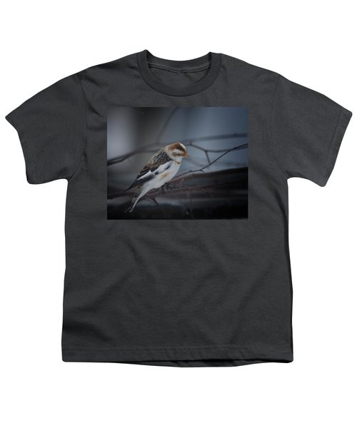 Visiter From The North Country Youth T-Shirt