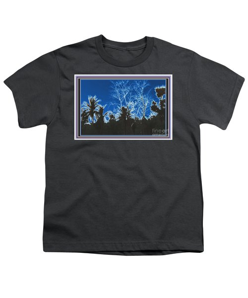 Artwork By Navinjoshi Buy Posters Greetings Pillows Duvet Tote Bags Phone Cases Metal Prints Or Dow Youth T-Shirt by Navin Joshi