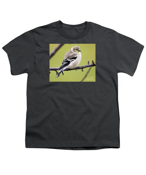 American Goldfinch Youth T-Shirt by Ricky L Jones