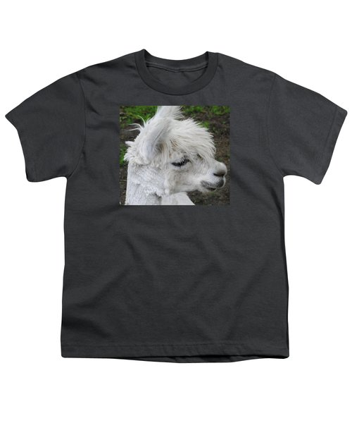 Baby Llama Youth T-Shirt by Ellen Henneke