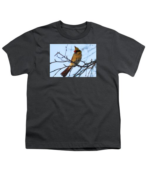 Youth T-Shirt featuring the photograph Female Northern Cardinal by Ricky L Jones