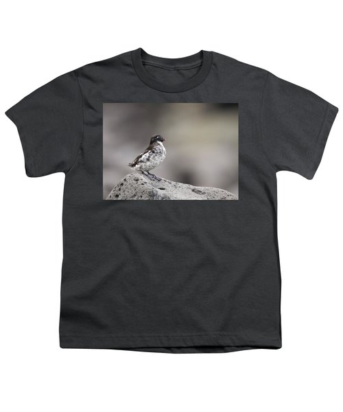 Least Auklet Youth T-Shirt