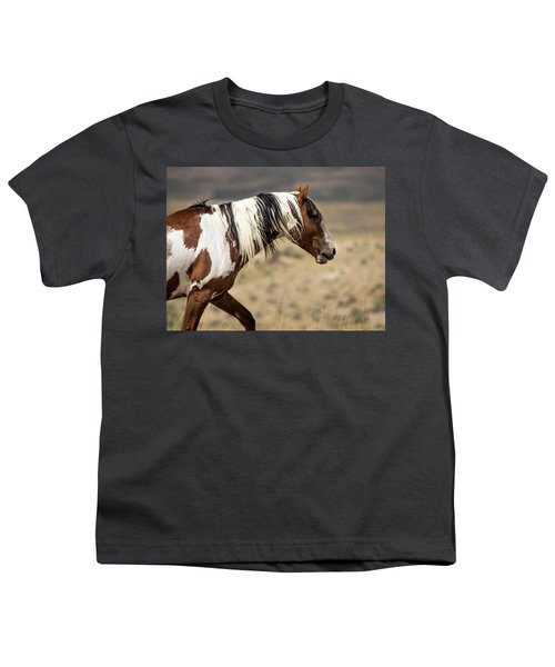 Picasso Of Sand Wash Basin Youth T-Shirt