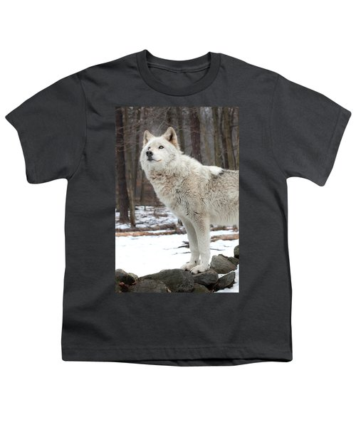A Wolfs Modeling Pose Youth T-Shirt
