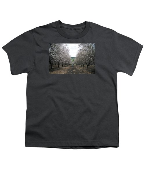 Youth T-Shirt featuring the photograph Almonds Of Lachish by Dubi Roman