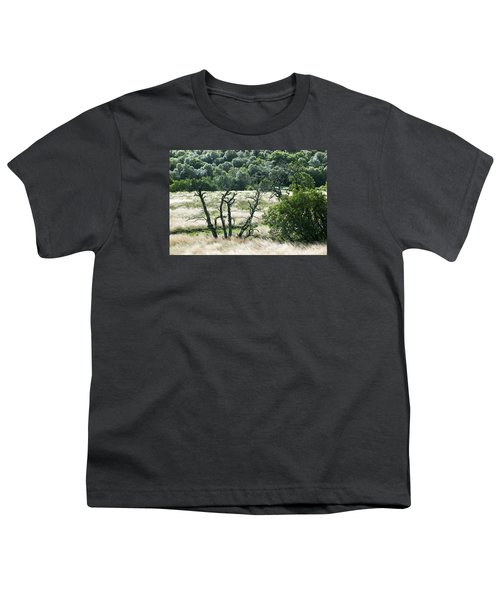 Autumn And Grass In Isle Of Skye, Uk Youth T-Shirt by Dubi Roman