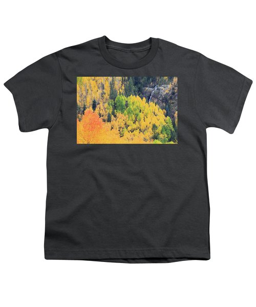 Youth T-Shirt featuring the photograph Autumn Glory by David Chandler