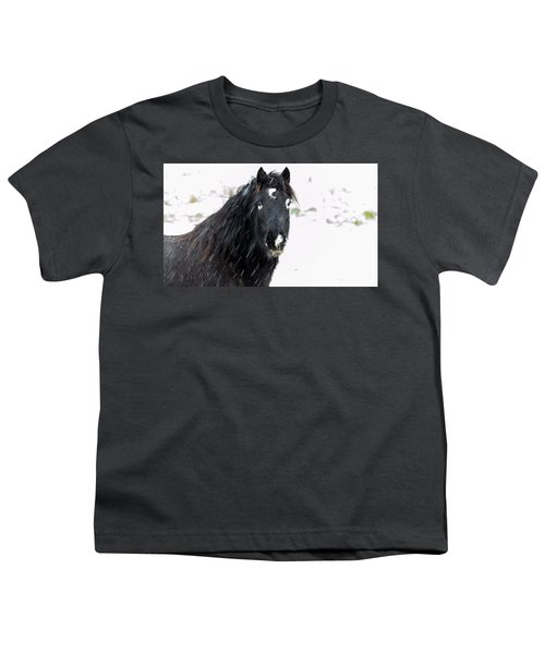 Black Horse Staring In The Snow Youth T-Shirt