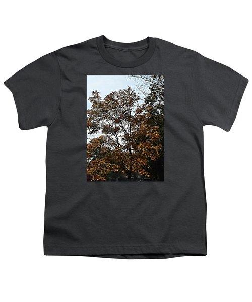 Brown Youth T-Shirt by Jana E Provenzano
