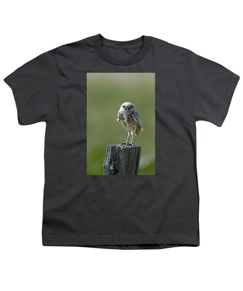 Youth T-Shirt featuring the photograph Burrowing Owl by Gary Lengyel