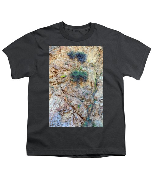 Youth T-Shirt featuring the photograph Canyon Vegetation by James BO Insogna