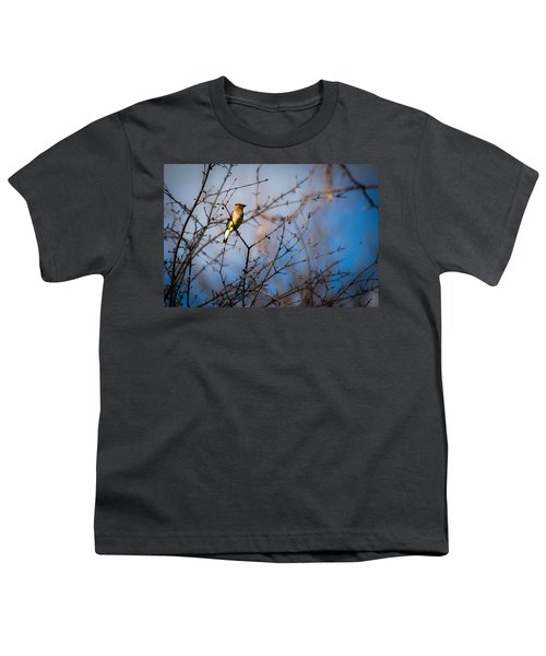 Cedar Waxwing Youth T-Shirt