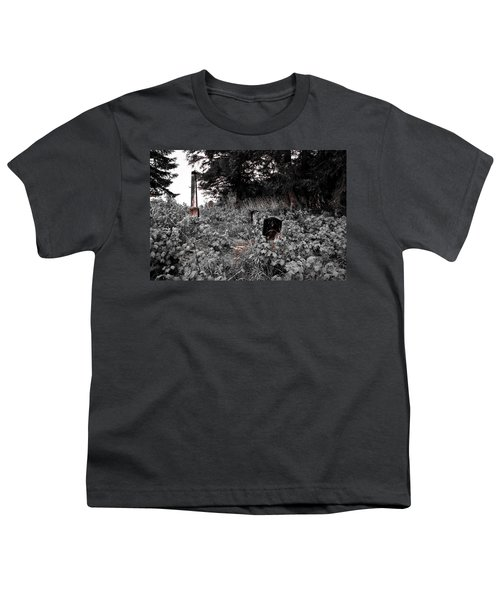 Cemetery In Red Youth T-Shirt