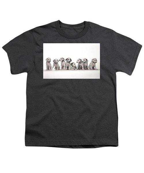 Dalmatian Youth T-Shirt