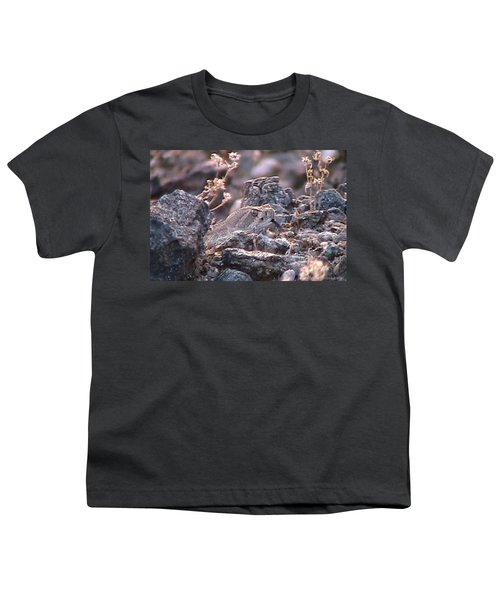 Dangerous Peekaboo  Youth T-Shirt