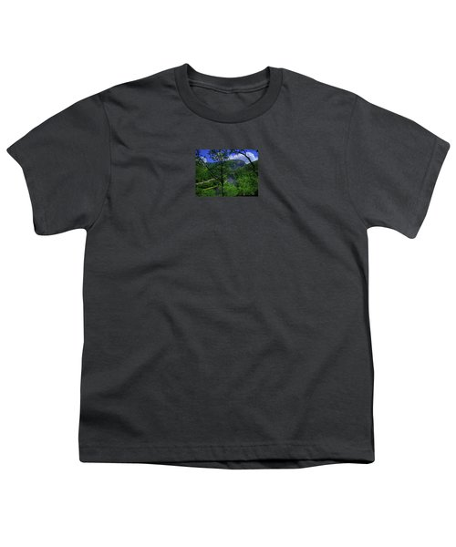 Delaware Water Gap Youth T-Shirt