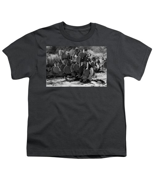Desert Prickly-pear No7 Youth T-Shirt