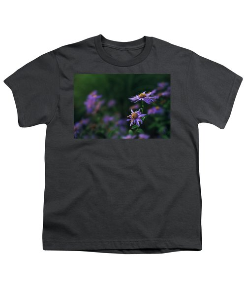 Fading Beauty Youth T-Shirt