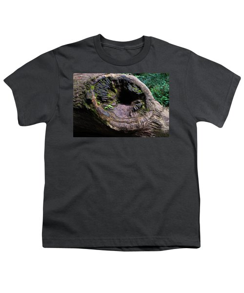 Giant Knot In Tree Youth T-Shirt