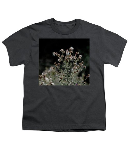 Goldfinch Sitting On A Thistle Youth T-Shirt
