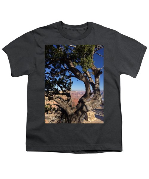 Grand Canyon No. 6 Youth T-Shirt by Sandy Taylor