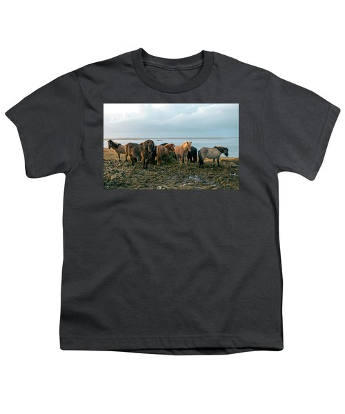 Horses In Iceland Youth T-Shirt by Dubi Roman