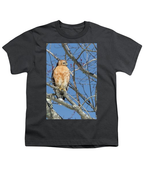 Youth T-Shirt featuring the photograph Hunting by Bill Wakeley