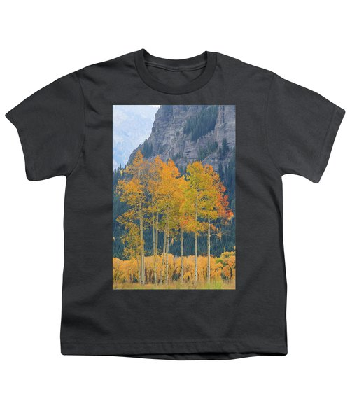 Youth T-Shirt featuring the photograph Just The Ten Of Us by David Chandler