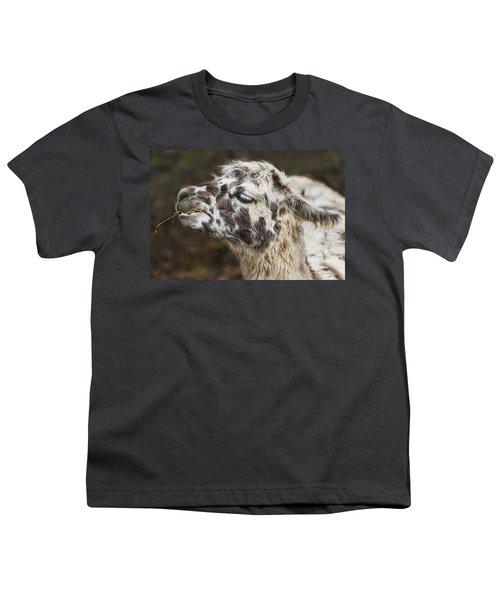 Lady Llama Youth T-Shirt
