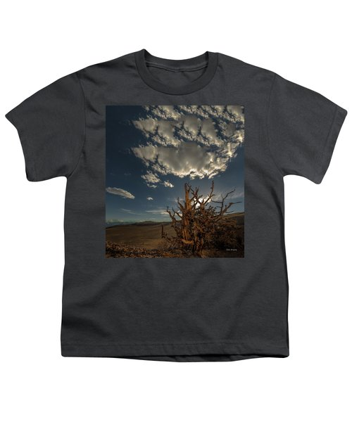 Late Afternoon In The Bristlecone Forest Youth T-Shirt