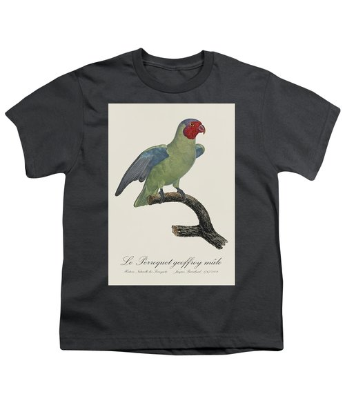 Le Perroquet Geoffroy Male / Red Cheeked Parrot - Restored 19th C. By Barraband Youth T-Shirt