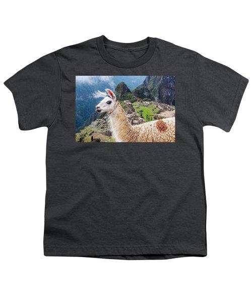 Llama At Machu Picchu Youth T-Shirt