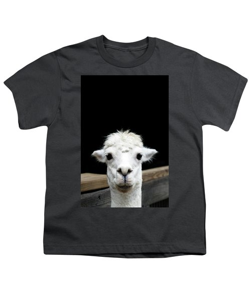 Llama Youth T-Shirt by Lauren Mancke