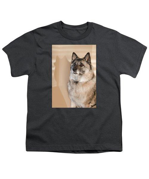 Loki Sepia Youth T-Shirt